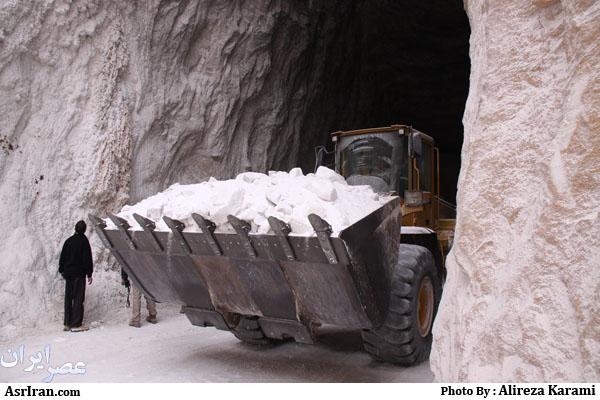 انواع نمک کشاورزی بهداشتی ونمک دام و طیور