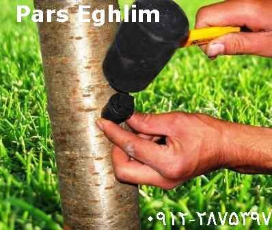 انواع کود تزریقی برای درختان میوه