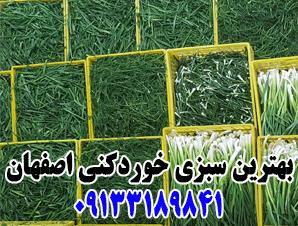 بهترین سبزی خردکنی در اصفهان
