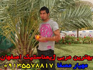 بهترین مربی ژیمناستیک اصفهان - مهیار مصفا