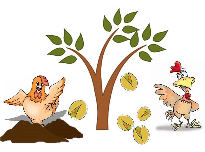 بهترین کود مرغ با قیمت مناسب را از ما بخواهید.