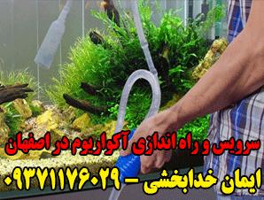 سرویس و راه اندازی آکواریوم در اصفهان