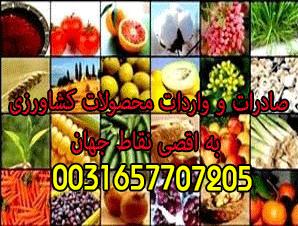 صادرات و واردات محصولات کشاورزی به اقصی نقاط جهان