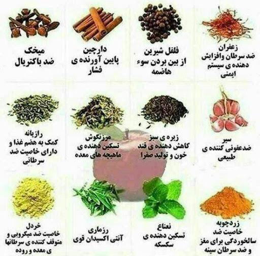 عطاری گیاهان دارویی ایران