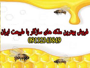 فروش بهترین ملکه های سازگار با طبیعت ایران