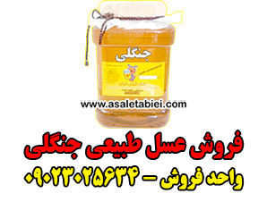 فروش عسل طبیعی جنگلی