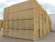 واردات غلات انسانی و دامی و انواع چوب نراد روسی