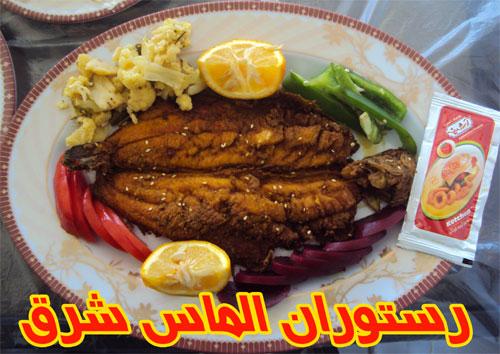 رستوران و ماهی سرای الماس شرق